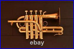 Excellent SCHILKE P7-4 GP piccolo trumpet used in Japan